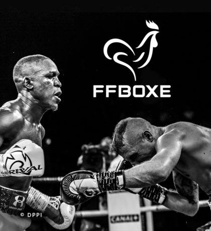 Projet_project_realisation_Federation_francaise_french_boxe_Vignette