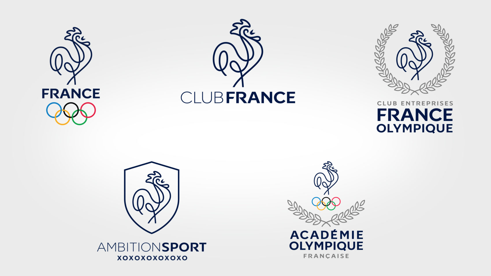 Projet_project_realisation_CNOSF_comite_national_olympique_et_sportif_francais_3