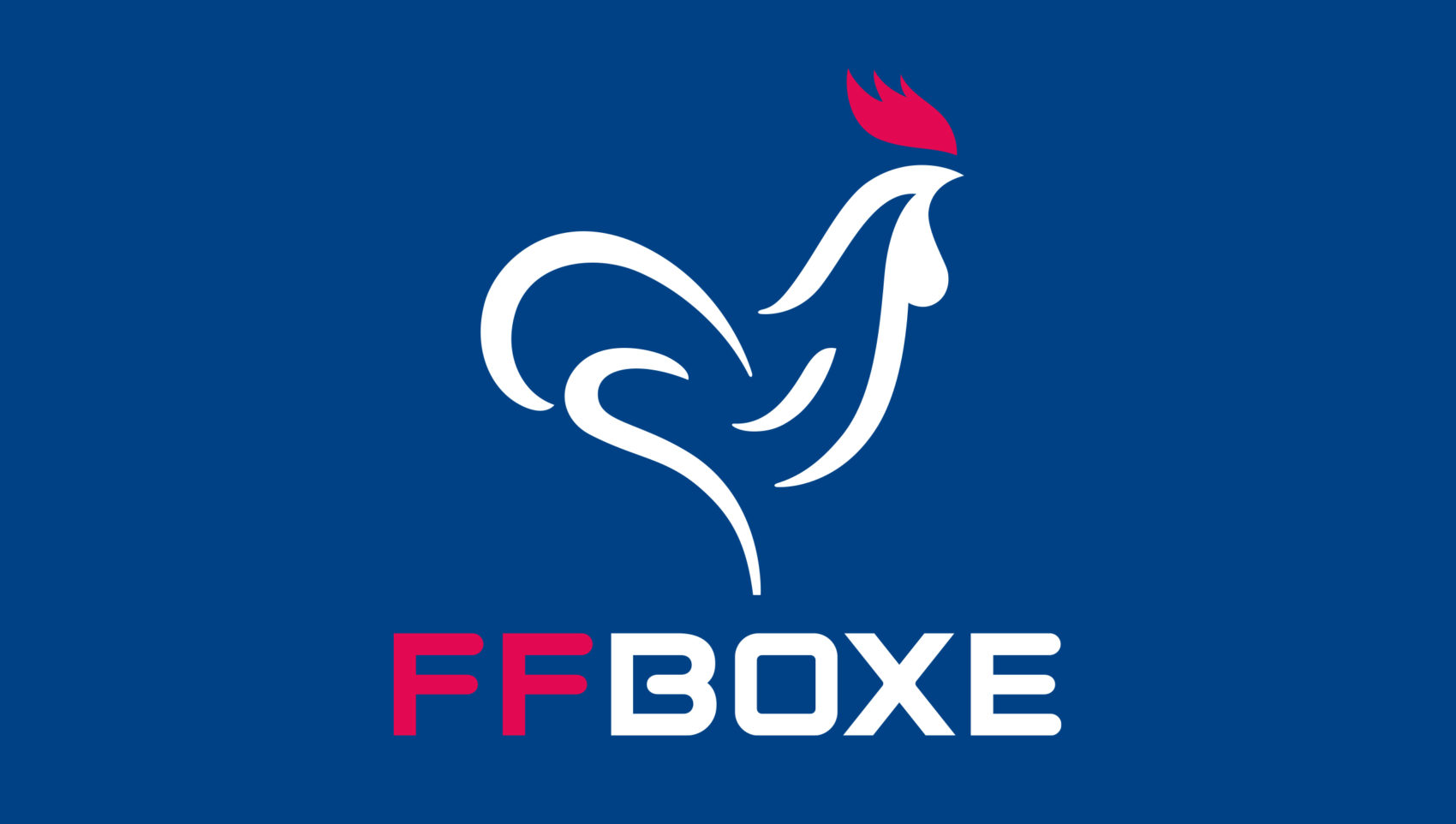 Projet_project_realisation_Federation_francaise_french_boxe_1